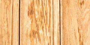 reno paint mart primer-newwood