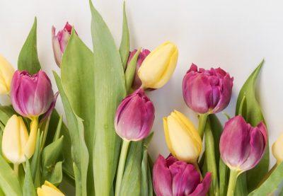 spring-interior-design-trends-2020-e1585339731704